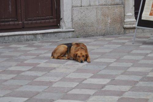 Montenegro_141
