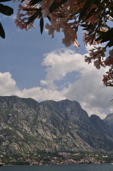 Montenegro_310