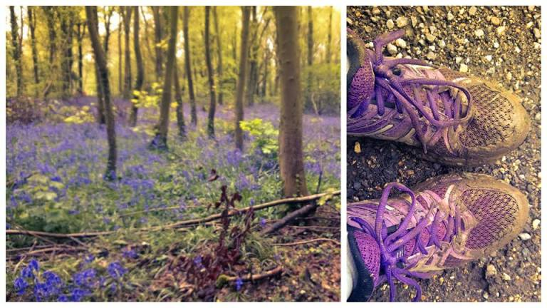 Bluebells and muddy traners